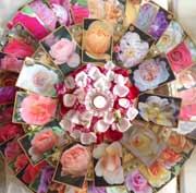 rose-mandala-3-pic